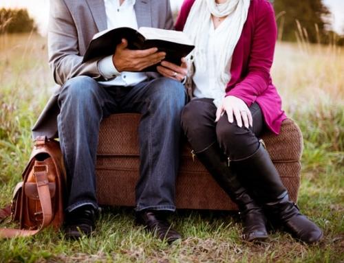 Inteligencia matrimonial