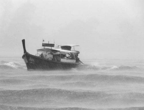 Cuando llegue la tormenta